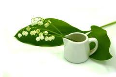 Leluja doliny Convallaria majalis kwitnie, liście i ceramiczna biała waza odizolowywający na białym tle zdjęcia stock