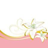 Leluja kwiatów falowy tło Zdjęcie Royalty Free