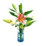 Leluja kwiat w wazie zdjęcie stock