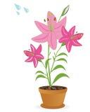 Leluja kwiatu roślina ilustracja wektor