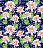 Leluja kwitnie - waterlily, dekoracyjny etniczny projekt bezszwowy kwiecisty wzoru akwarela ilustracji