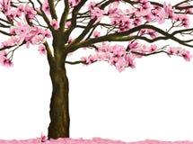 Leluja magnoliowy kwiat royalty ilustracja