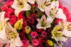 Leluje i róże Obrazy Royalty Free