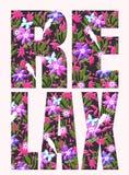 Lema de la tipograf?a con el ejemplo de la flor stock de ilustración