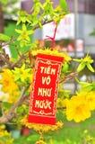Lema por el Año Nuevo de Tet fotos de archivo