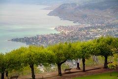 Lemański jezioro i Lavaux na brzeg Zdjęcie Royalty Free