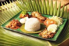 Lemak asiático del nasi del alimento Foto de archivo