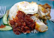 Lemak de Nasi o arroz de la leche de coco Foto de archivo