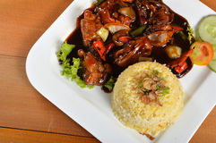 Lemak de Nasi, refeição tradicional asiática do arroz Foto de Stock