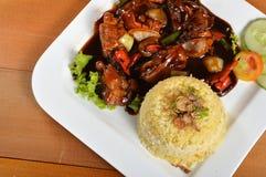 Lemak di Nasi, pasto tradizionale asiatico del riso Fotografia Stock