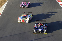 LeMans Series Royalty Free Stock Photography