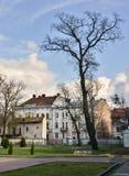 Lemberg Stockfoto
