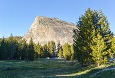 Lembert圆顶,优胜美地国家公园 库存图片