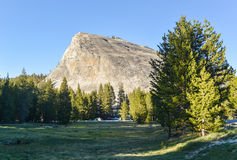 Lembert Dome, Yosemite National Park Stock Images