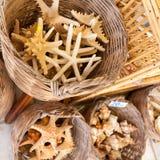 Lembranças da estrela do mar e das conchas do mar para a venda Foto de Stock