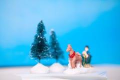 Lembranças do inverno Foto de Stock