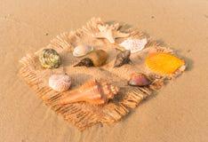 Lembranças marinhas Imagem de Stock