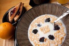 Lembrete do cereal do dia de pagamento Imagens de Stock Royalty Free