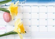 Lembrete do feriado da Páscoa marcado no calendário com narcisos amarelos amarelos e o ovo colorido fotografia de stock royalty free