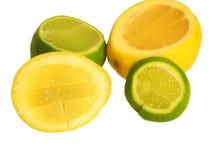 Lemmon och limefrukt Royaltyfri Foto