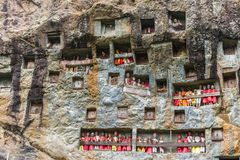 Lemo, Indonesia - september 5, 2014: famous burial site with coffins placed in caves carved into the rock, guarded by the statues. Of the dead persons called royalty free stock images