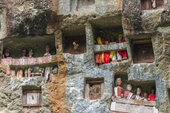 Lemo, Indonesia - september 5, 2014: famous burial site with coffins placed in caves carved into the rock, guarded by the statues. Of the dead persons called stock photos