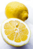 lemon 01 Obraz Royalty Free
