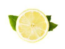 Free Lemon Stock Photo - 10620890