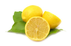 Lemon. The lemon (Citrus × limon) is a hybrid in cultivated wild plants. It is the common name for the reproductive tissue surrounding the seed of the Stock Images
