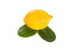 Lemon. Single ripe lemon isolated on white background stock photo