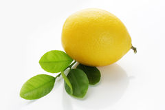 Lemon. And leaves on white background Stock Image