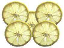 Lemon. Five slices of yellow lemon transparing light Royalty Free Stock Images