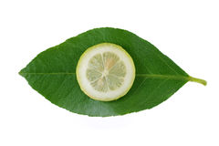 Lemon. Slice of lemon and green leaf Royalty Free Stock Photography