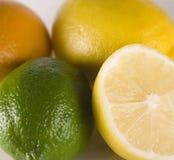 Lemon. Limet , orange - free types of fruit Royalty Free Stock Photo