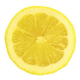 Lemon. In a Isolated Background Royalty Free Stock Photo