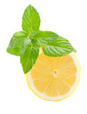 Lemon. And mint on a white background Royalty Free Stock Photography