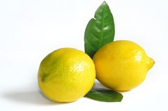 Lemon. Two fresh yellow lemon with leaves Royalty Free Stock Image