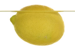Lemon. A lemon is swimming in water stock image