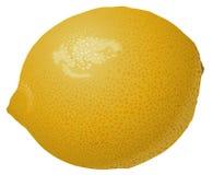 Lemon. High detailed vector illustration Stock Illustration