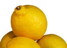 Lemon Stock Photos