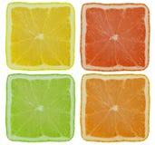 Lemon. Square lemon and lime orange grapefruit Royalty Free Stock Photography