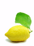Lemon (2) Stock Photo