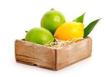 Lemon Royalty Free Stock Photo
