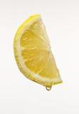 Lemon Stock Image
