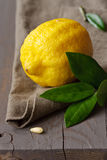 Lemon. Royalty Free Stock Photo