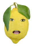 Lemon. Fresh fruit lemon face close up Stock Photography