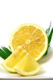 Lemon. Isolated image of garnish slices of lemon royalty free stock image