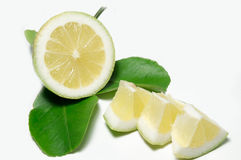 Lemon. Green lemon on a white background in artificial light Stock Photo