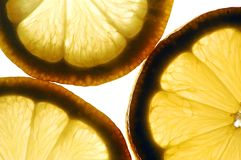 Lemon. Color photo of backlit lemons Royalty Free Stock Images