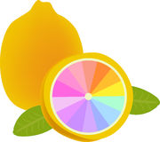 Lemon. Illustration of lemon design.colorful Stock Photography